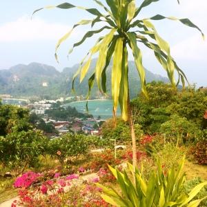 Phi Phi lookout
